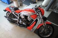Harley V-Rods